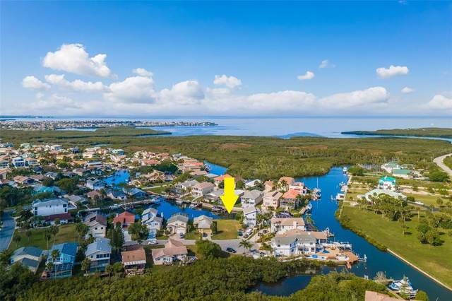 Lot 152 Drake Court, New Port Richey, FL 34652 (MLS #T3297485) :: Gate Arty & the Group - Keller Williams Realty Smart