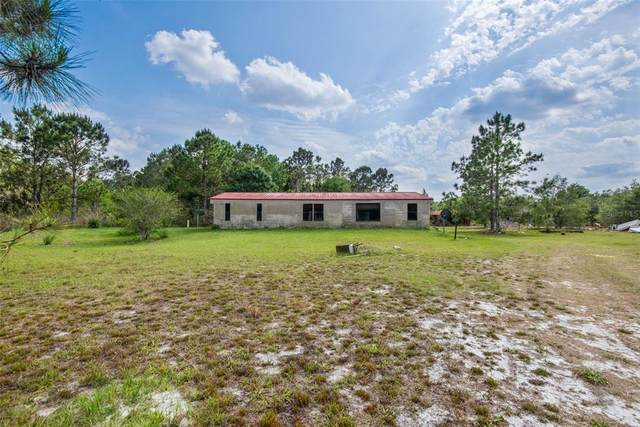 2489 Gabriel Road, Fort Meade, FL 33841 (MLS #T3301791) :: The Price Group