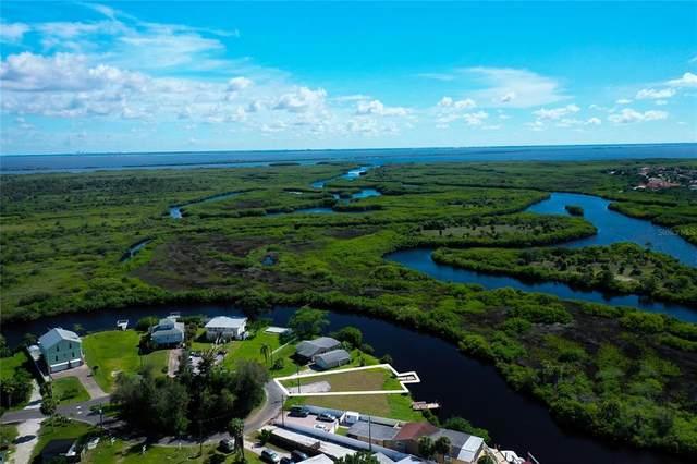 8945 Rocky Creek Drive, Tampa, FL 33615 (MLS #T3302117) :: Gate Arty & the Group - Keller Williams Realty Smart