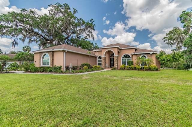 819 John Cressler Drive, Seffner, FL 33584 (MLS #T3304102) :: Team Borham at Keller Williams Realty