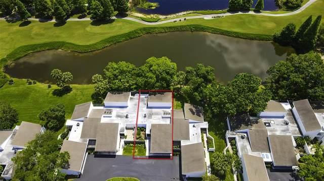 14103 Cypress Run, Tampa, FL 33618 (MLS #T3304641) :: Premier Home Experts