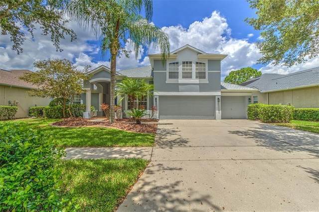 3623 Cordgrass Drive, Valrico, FL 33596 (MLS #T3309674) :: Zarghami Group