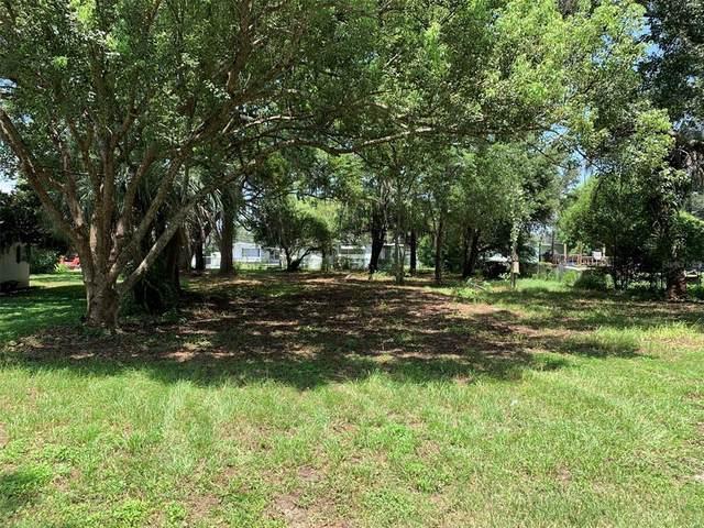 37413 Lupine Drive, Zephyrhills, FL 33541 (MLS #T3317998) :: SunCoast Home Experts