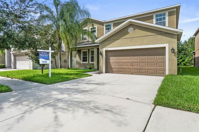 13178 Royal Pines Avenue, Riverview, FL 33579 (MLS #T3320321) :: Zarghami Group