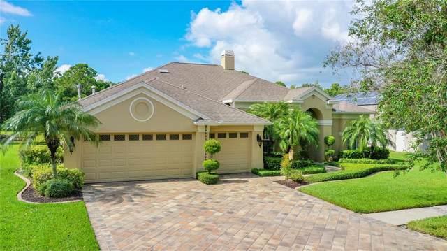 12439 Bristol Commons Circle, Tampa, FL 33626 (MLS #T3321226) :: GO Realty