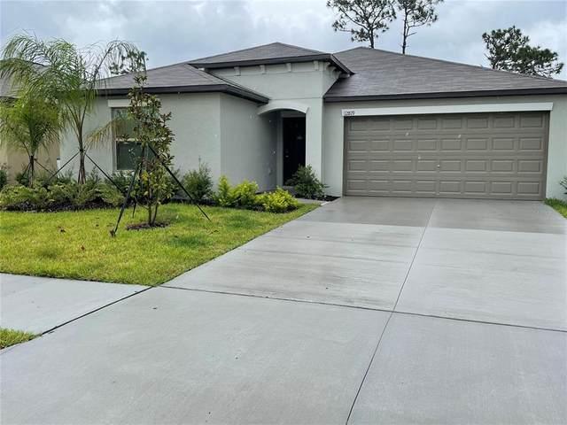 12819 Wildflower Meadow Drive, Riverview, FL 33579 (MLS #T3328025) :: The Curlings Group