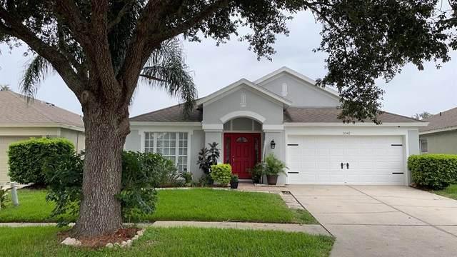 5542 Grindstone Loop, Wesley Chapel, FL 33544 (MLS #T3329162) :: Cartwright Realty