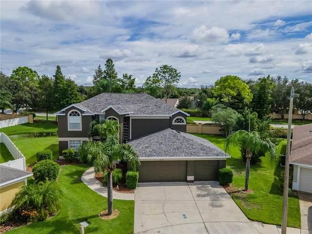 27229 Sea Breeze Way, Wesley Chapel, FL 33544 (MLS #T3331708) :: Future Home Realty