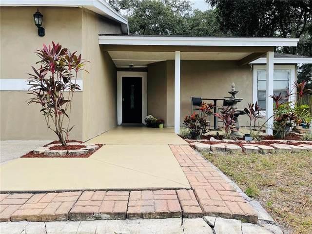 6334 Quail Ridge Drive, Tampa, FL 33625 (MLS #T3332992) :: Blue Chip International Realty