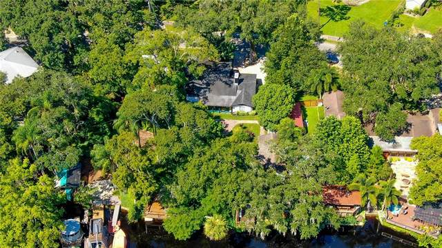 1506 E Park Circle, Tampa, FL 33610 (MLS #T3333224) :: McConnell and Associates