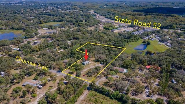 12538 Choctaw Trail, Hudson, FL 34669 (MLS #T3334054) :: The Nathan Bangs Group