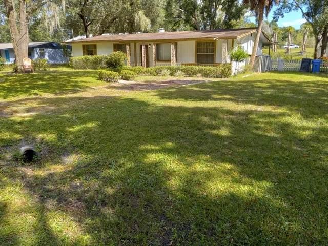 6115 N Falkenburg Road, Tampa, FL 33610 (MLS #T3336779) :: Charles Rutenberg Realty