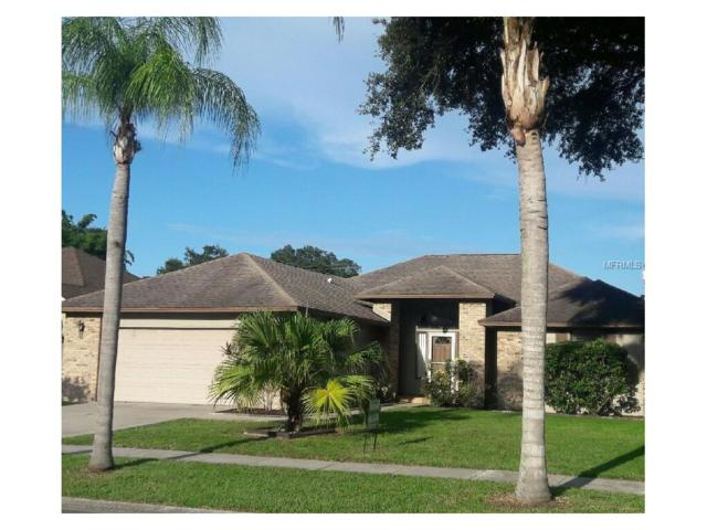 Tampa, FL 33625 :: The Duncan Duo & Associates