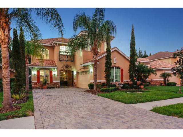 10878 Cory Lake Drive, Tampa, FL 33647 (MLS #U7828384) :: Team Bohannon Keller Williams, Tampa Properties