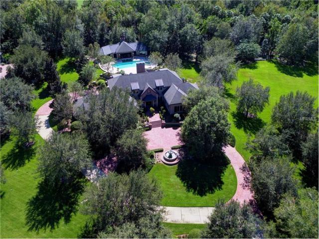 12610 Tradition Drive, Dade City, FL 33525 (MLS #U7835342) :: Team Bohannon Keller Williams, Tampa Properties
