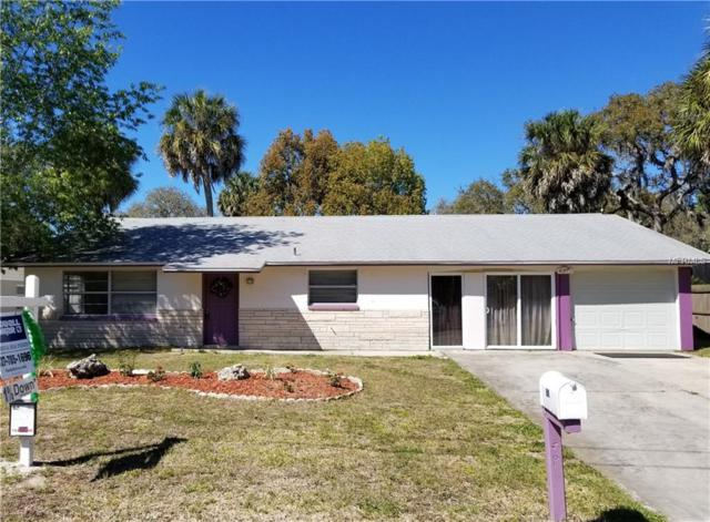 8711 Long Boat Lane, Hudson, FL 34667 (MLS #U7847967) :: Griffin Group