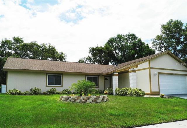 4989 Cardinal Trail, Palm Harbor, FL 34683 (MLS #U7850574) :: Delgado Home Team at Keller Williams