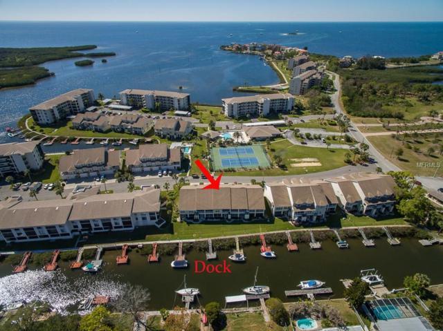 8234 Aquila Street, Port Richey, FL 34668 (MLS #U7851086) :: Cartwright Realty
