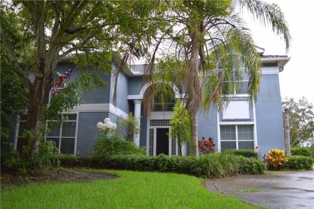 8609 Buttonwood Lane N, Pinellas Park, FL 33782 (MLS #U7853805) :: EXIT King Realty