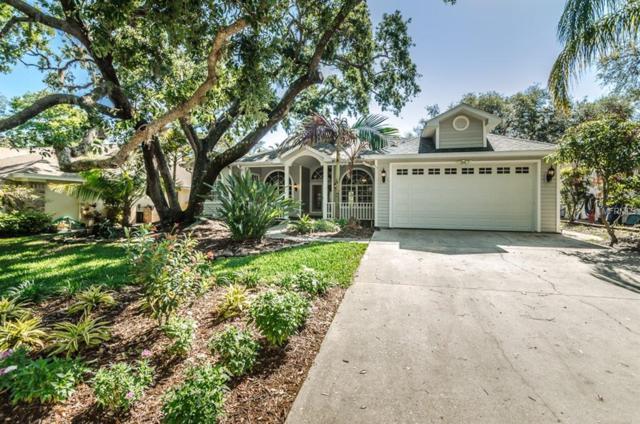 188 Sage Circle, Crystal Beach, FL 34681 (MLS #U7853961) :: Chenault Group