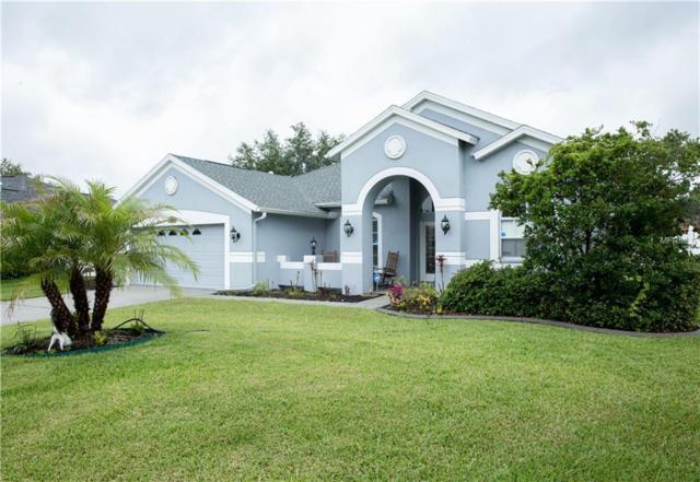 8934 Wavyedge Court, Trinity, FL 34655 (MLS #U8004081) :: Delgado Home Team at Keller Williams