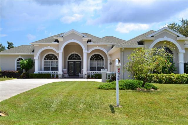 6236 Rockross Avenue, New Port Richey, FL 34655 (MLS #U8005930) :: The Duncan Duo Team
