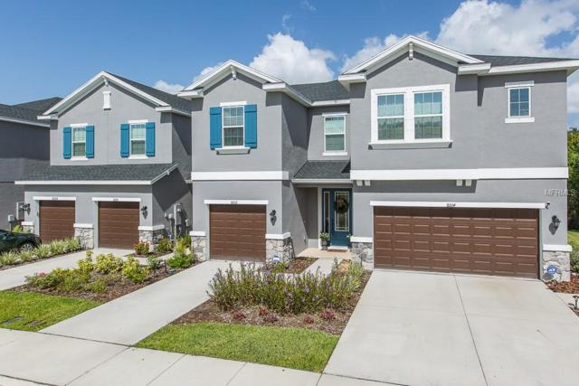 8212 Muddy Pines Place, Tampa, FL 33635 (MLS #U8012617) :: The Duncan Duo Team