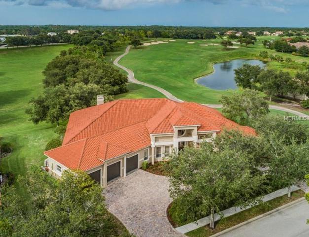 3725 Douglas Place, Palm Harbor, FL 34683 (MLS #U8013275) :: Medway Realty
