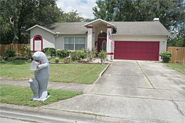 6081 65TH Avenue N, Pinellas Park, FL 33781 (MLS #U8014789) :: Cartwright Realty