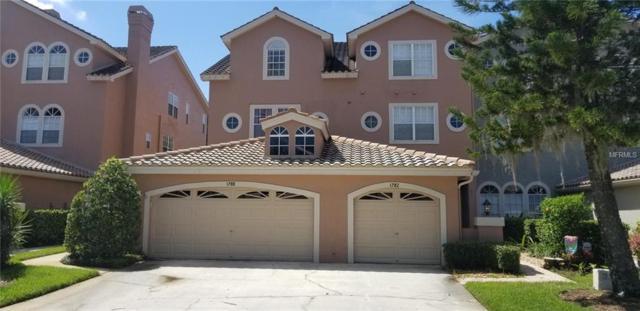 1780 Arabian Lane, Palm Harbor, FL 34685 (MLS #U8015644) :: Delgado Home Team at Keller Williams