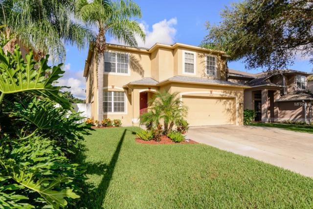 3010 Savannah Oaks Circle, Tarpon Springs, FL 34688 (MLS #U8018201) :: RE/MAX CHAMPIONS