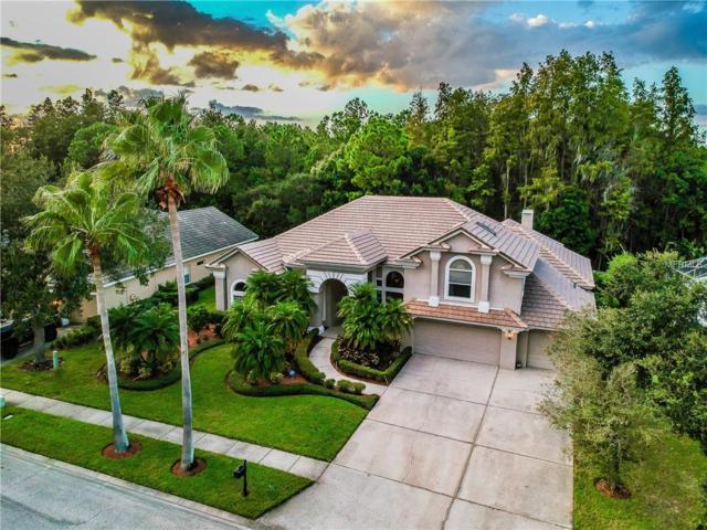 12103 Marblehead Drive, Tampa, FL 33626 (MLS #U8019947) :: Team Suzy Kolaz