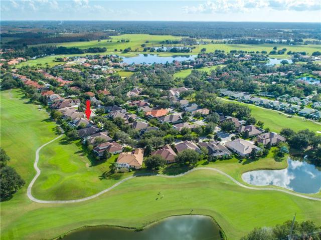 1444 Parilla Circle, Trinity, FL 34655 (MLS #U8024157) :: The Duncan Duo Team