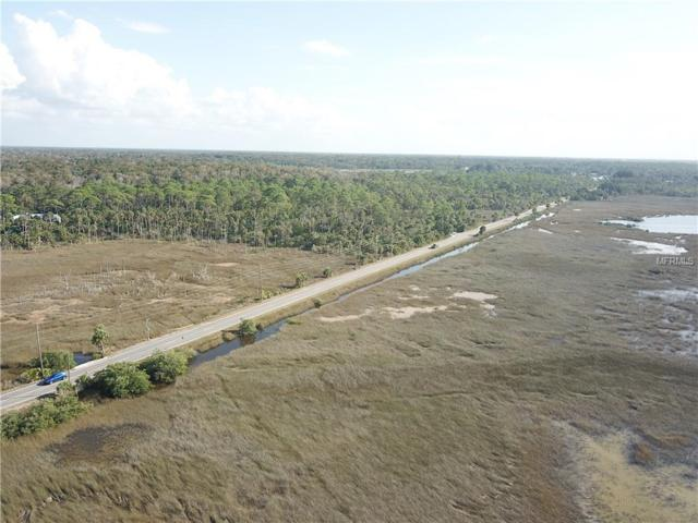 Osowaw Boulevard, Spring Hill, FL 34607 (MLS #U8024546) :: Burwell Real Estate
