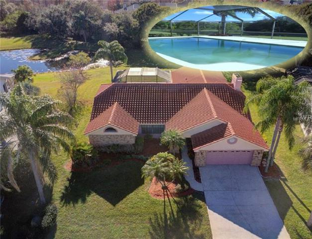 118 Woodcreek Drive S, Safety Harbor, FL 34695 (MLS #U8027923) :: Paolini Properties Group