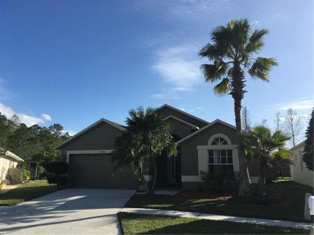 Address Not Published, Tampa, FL 33626 (MLS #U8031292) :: The Duncan Duo Team