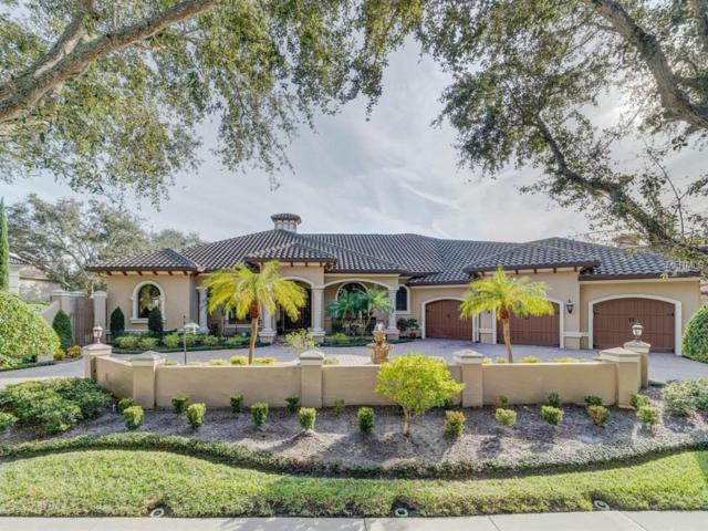 1220 Playmoor Drive, Palm Harbor, FL 34683 (MLS #U8032521) :: Delgado Home Team at Keller Williams