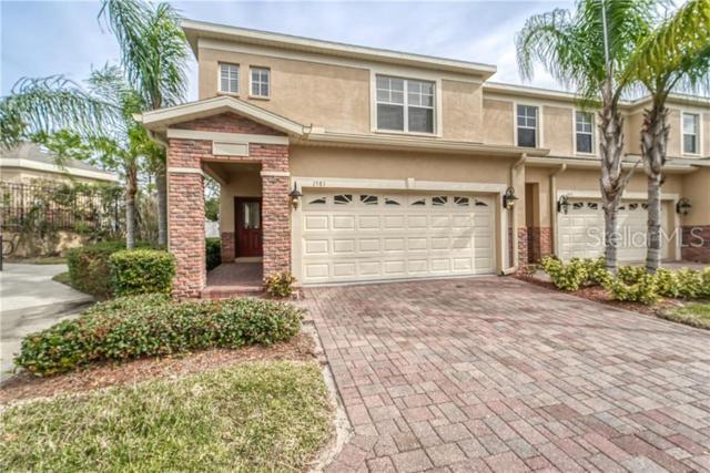 1581 Hillview Lane, Tarpon Springs, FL 34689 (MLS #U8032832) :: Paolini Properties Group