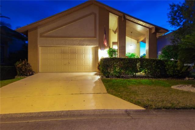 6345 Fjord Way, New Port Richey, FL 34652 (MLS #U8034802) :: Griffin Group