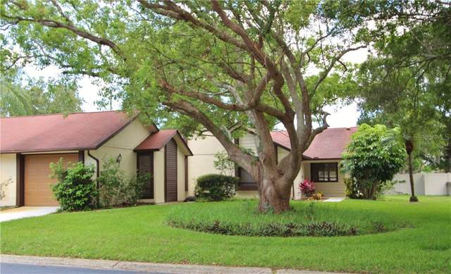 2502 Bay Berry Drive, Clearwater, FL 33763 (MLS #U8037396) :: Griffin Group