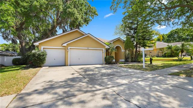 761 Sunflower Drive, Palm Harbor, FL 34683 (MLS #U8038441) :: Delgado Home Team at Keller Williams