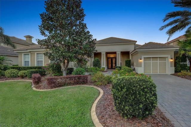 11709 Glen Wessex Court, Tampa, FL 33626 (MLS #U8038993) :: Gate Arty & the Group - Keller Williams Realty