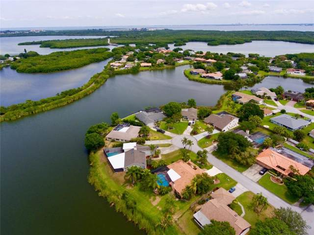 7221 16TH Court NE, St Petersburg, FL 33702 (MLS #U8043742) :: Mark and Joni Coulter | Better Homes and Gardens