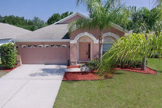 31253 Glendalough Way, Wesley Chapel, FL 33545 (MLS #U8045035) :: Team Bohannon Keller Williams, Tampa Properties