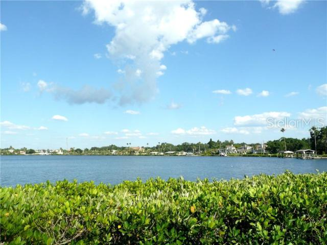 Whitcomb Boulevard, Tarpon Springs, FL 34689 (MLS #U8046227) :: The Duncan Duo Team