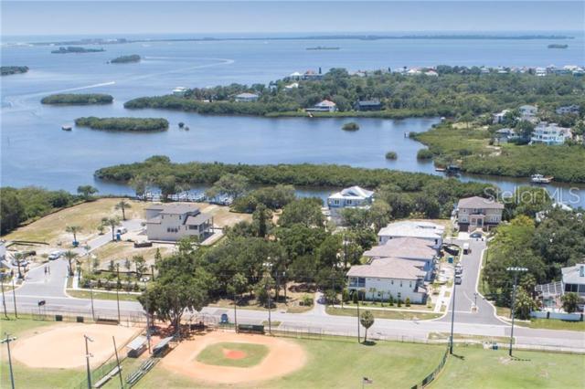 1415 8TH Street, Palm Harbor, FL 34683 (MLS #U8047912) :: The Duncan Duo Team