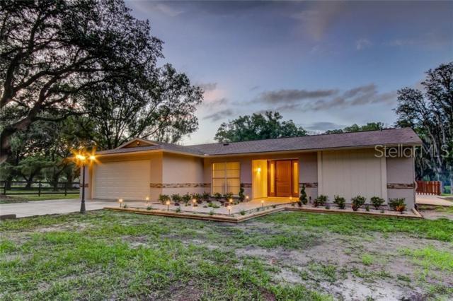 30403 Palm Lane, Wesley Chapel, FL 33545 (MLS #U8049211) :: The Edge Group at Keller Williams