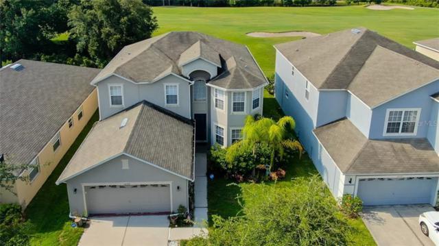 10537 Coral Key Avenue, Tampa, FL 33647 (MLS #U8051202) :: Cartwright Realty