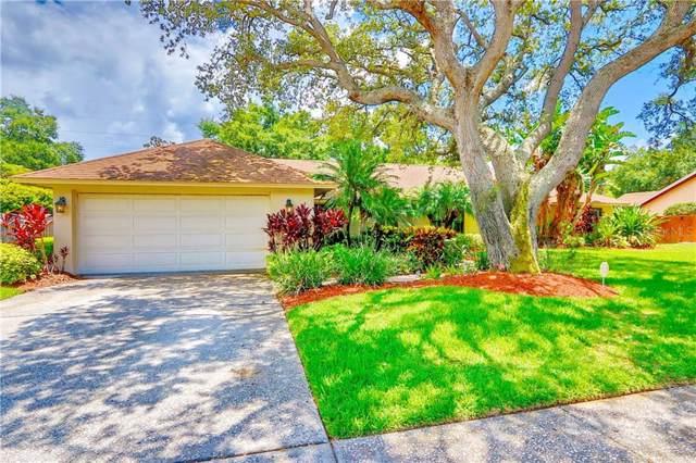 9921 Frank Drive E, Seminole, FL 33776 (MLS #U8051464) :: Burwell Real Estate