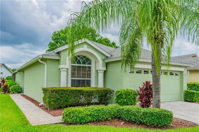 6632 Gentle Ben Circle, Wesley Chapel, FL 33544 (MLS #U8051496) :: Griffin Group